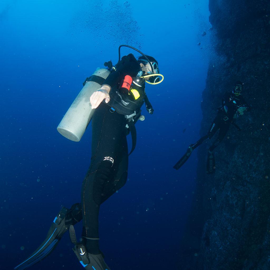 Silent World Divers Scuba Diving