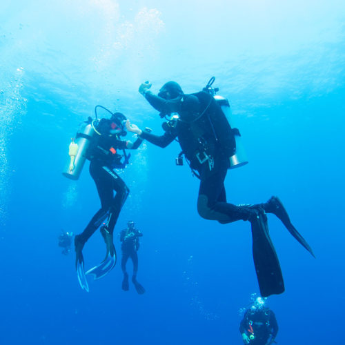 Padi Certifications Courses