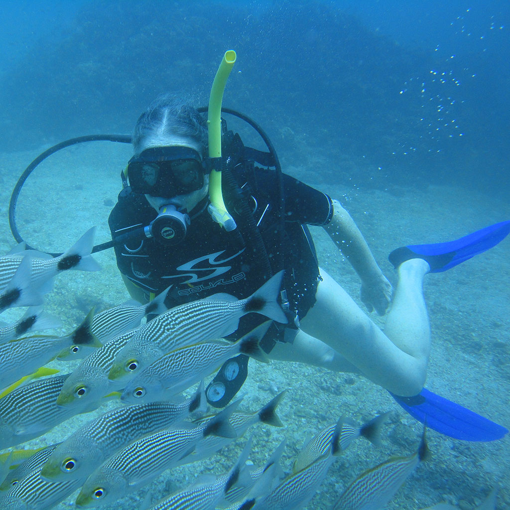 SSI Certification Scuba Diver
